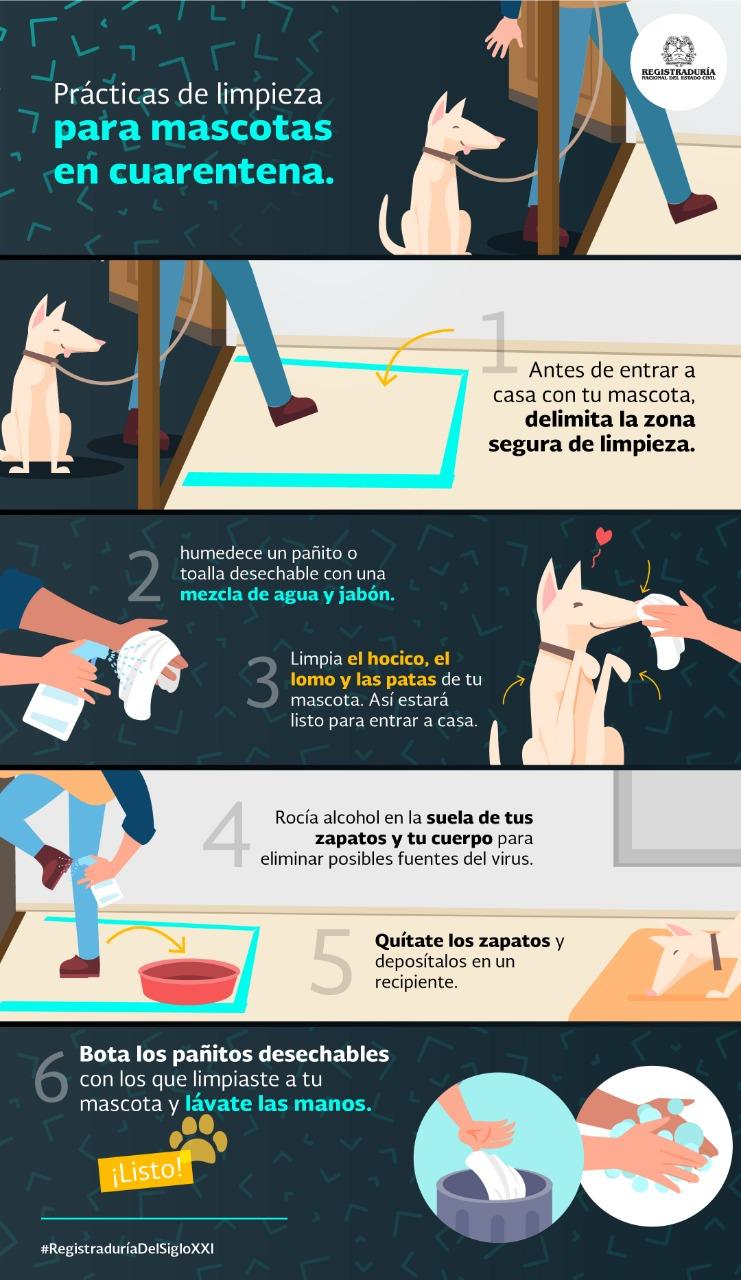 Cómo cuidar tu #mascota en cuarentena - Infografía